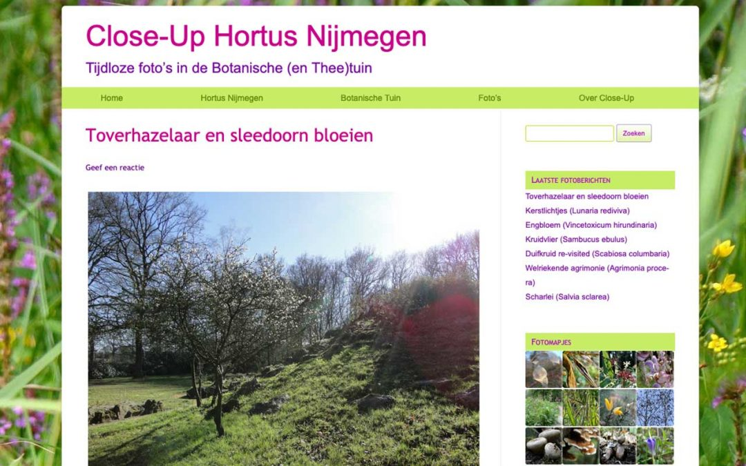 Close-up de foto-website van Dominique met blogs over allerlei bloemen in Hortus Nijmegen, linkt naar de website.