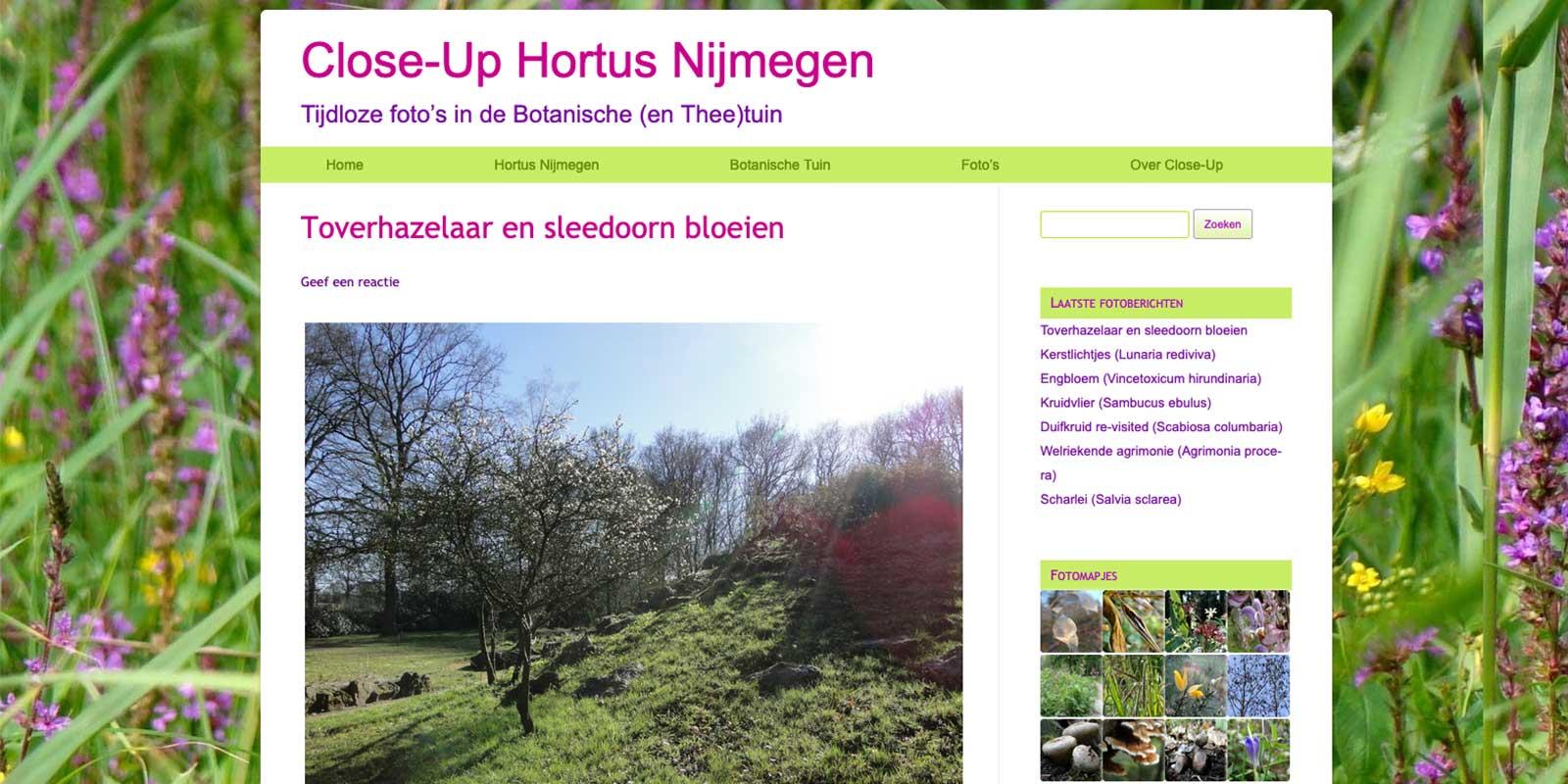 Close-up de foto-website van Dominique met blogs over allerlei bloemen in Hortus Nijmegen, linkt naar de website.