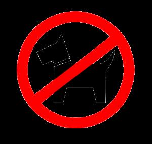 Honden niet toegestaan. Ook niet aan de lijn.