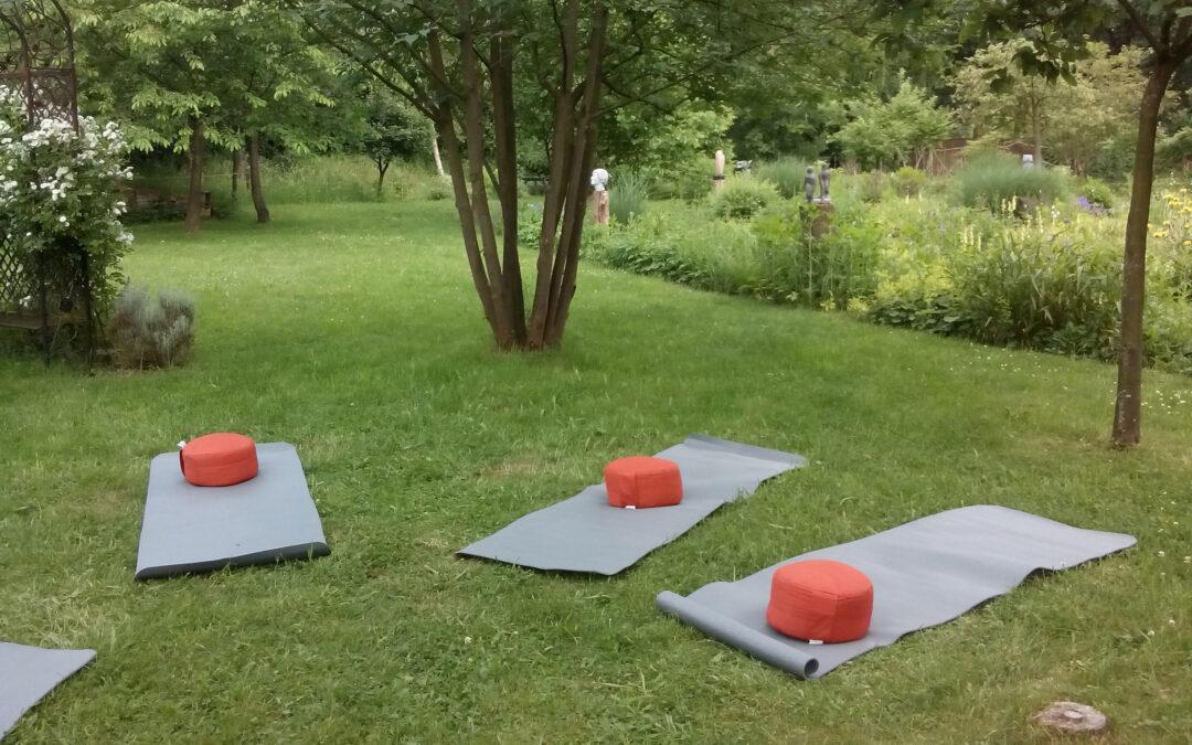 Ochtend meditatie in de Hortus
